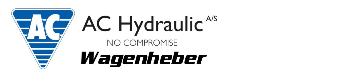 AC Hydraulik Werkstattpresse